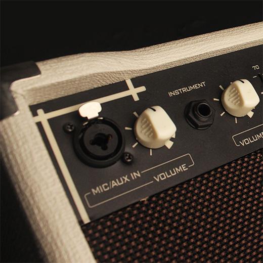 Cort AF30 Acoustic Amp Inputs & Outputs