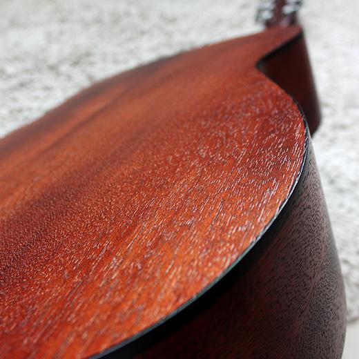 Cort AF510 Mahogany Back & Sides