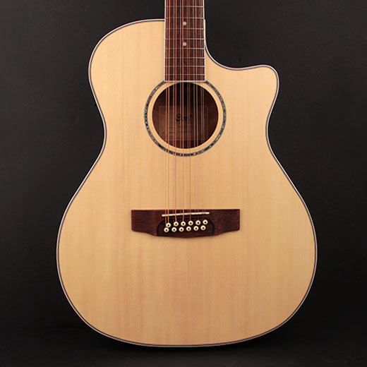 Cort GA-MEDX-12 12 String Grand Aditorium Body