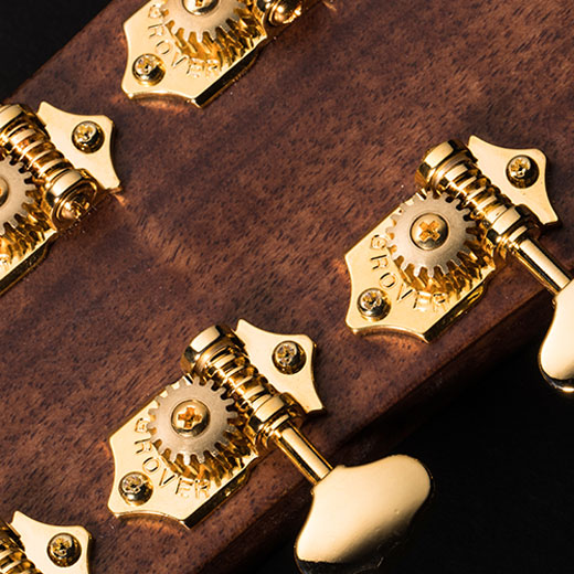 Cort Gold-A6 Deluxe Vintage Gold Machine Heads