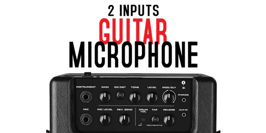 Mighty8BT Guitar and Microphone inputs