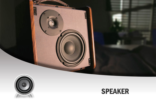 NU-X AC50 Stageman Acoustic Amp Speakers