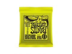 Ernie Ball Nickel Wound Slinky -  10/46 Regular Slinky (Lime) 2221