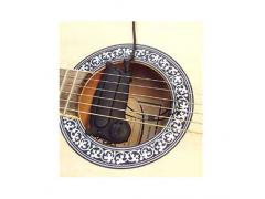 Acoustic Sound Hole Pickup 265