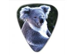 Australian Series Guitar Pick - Koala