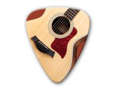 Themed Series Country Guitar Picks - Blonde Guitar